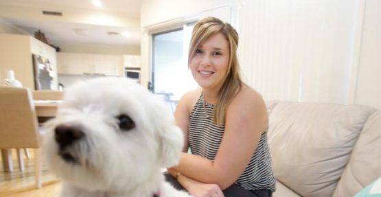 Body corporate review and issue of pets in apartments in limbo after state election